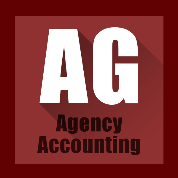 Agency Accounting Procare Software Module